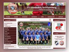 FV Gemünden Homepage